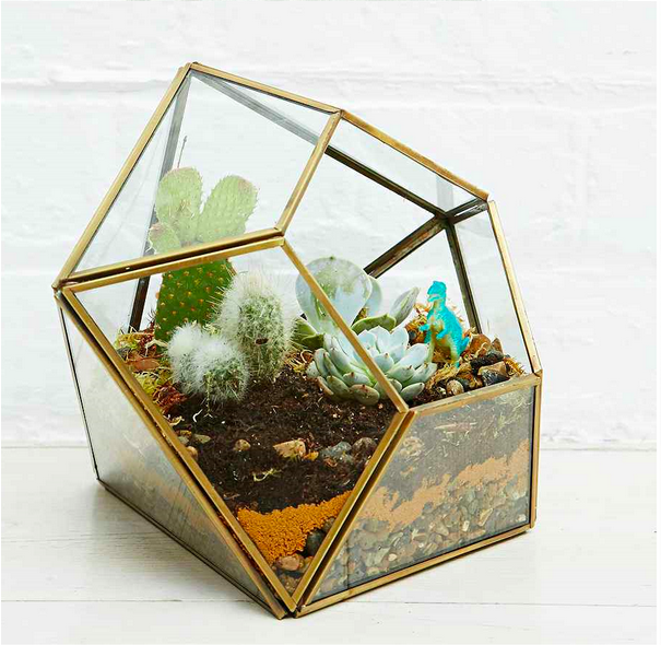 terrrarium urban outfitters.png
