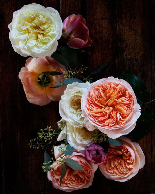 Kari Herer-flowers 2