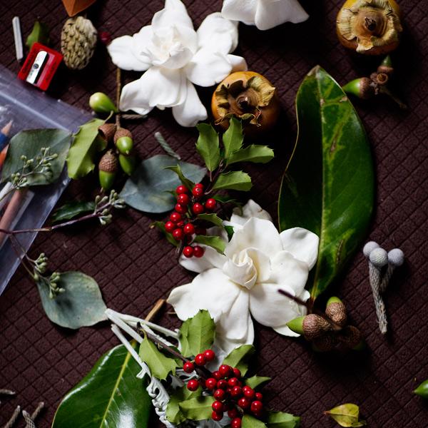 Kari Herer-flowers