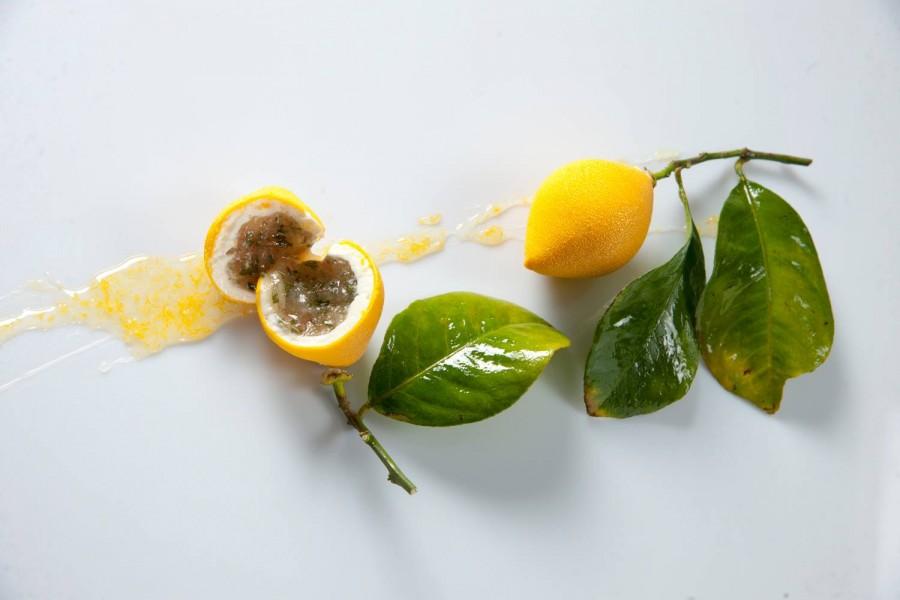 Cédric Grolet citron
