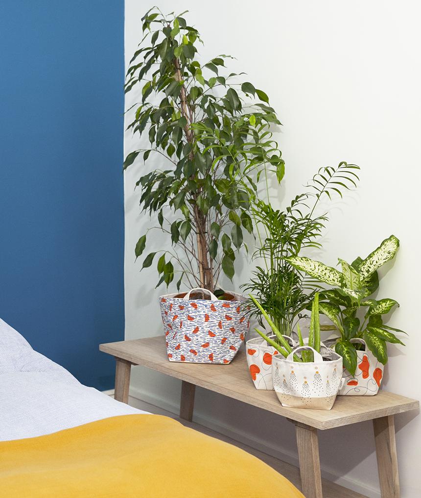 Plantes-et-moi_deco-plantes