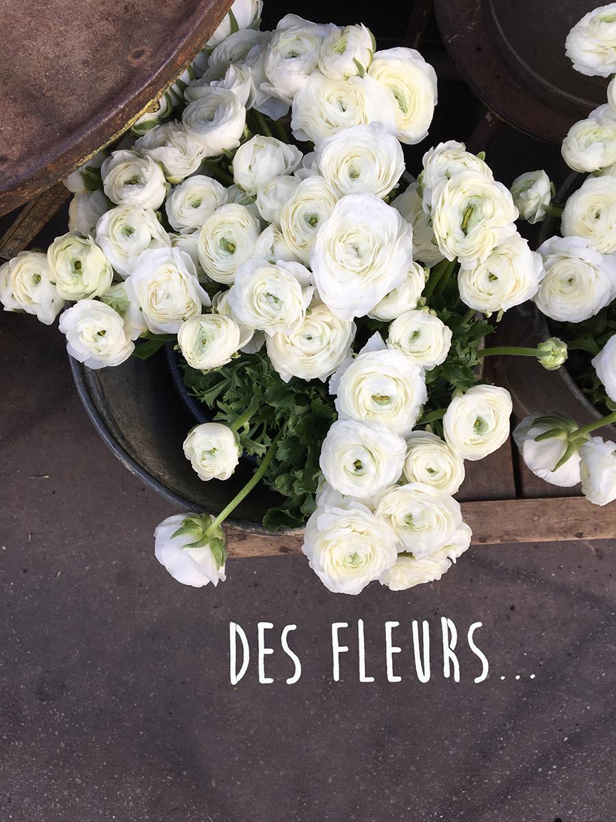 fantine_et_simon_street_art_fleurs