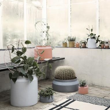 Faites entrer les plantes dans votre intérieur