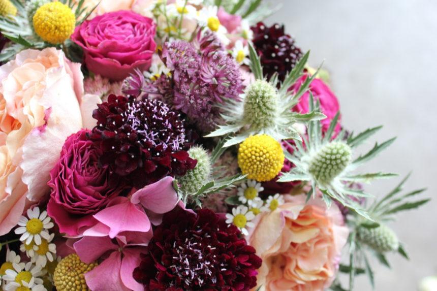 Singularité florale avec Poppy Figue