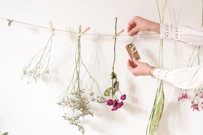 Fleurs-séchées-Kinfolk-Bergamotte-Les-Confettis