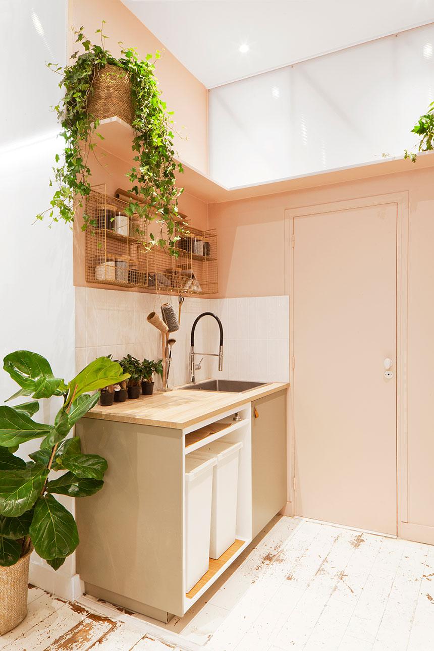 Agence-Ivy-Paysagiste-Paris---Les-Confettis