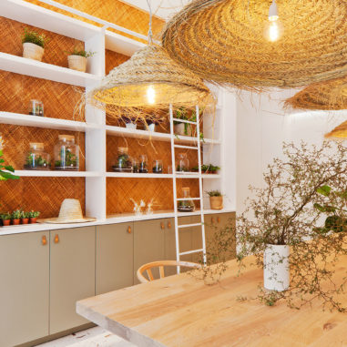 boutique-plantes-Ivy-Paris-Les-Confettis