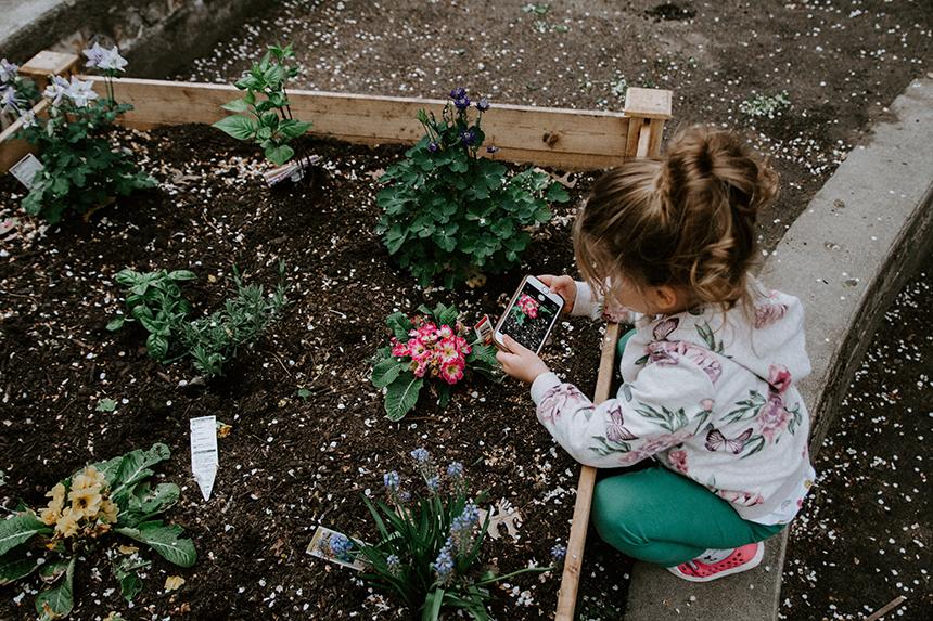 jardin-confettis-activite-famille-enfants