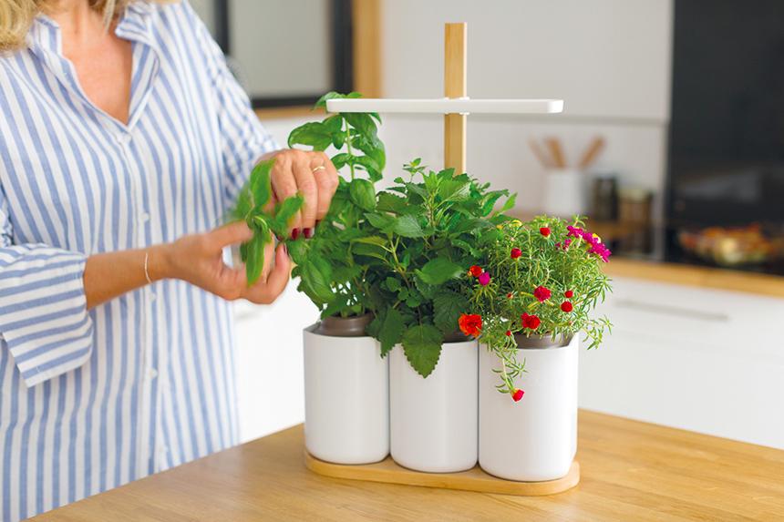 lilo-cuisine-jardin-interieur-confettis
