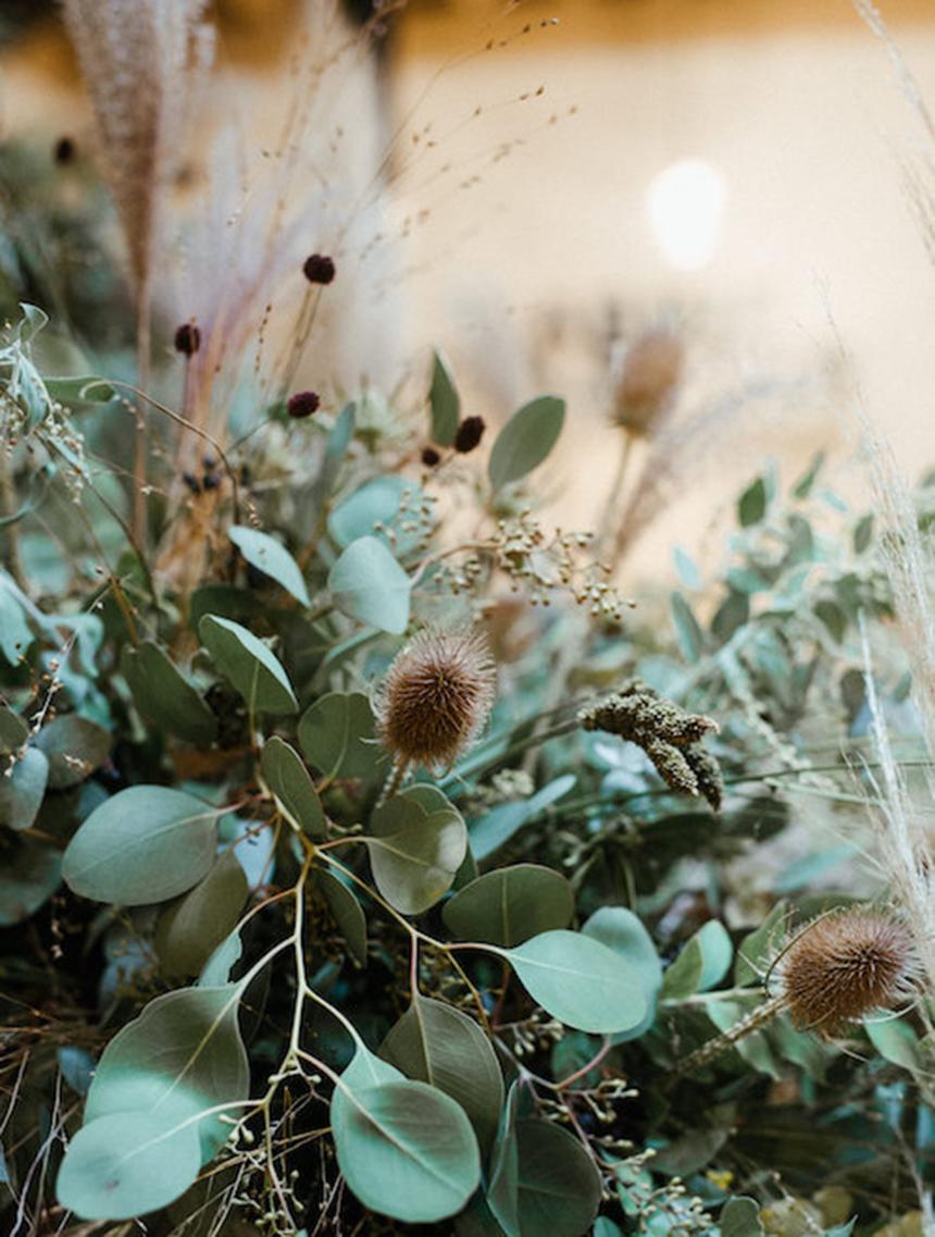 herbes-hautes-paris-les-confettis