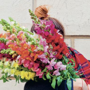 désirée-livre-floriculture-les-confettis